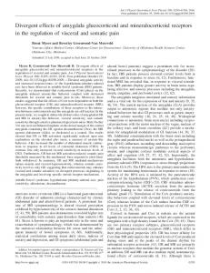 Divergent effects of amygdala glucocorticoid and mineralocorticoid ...