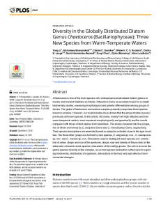 Diversity in the Globally Distributed Diatom Genus Chaetoceros - PLOS