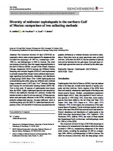 Diversity of midwater cephalopods in the northern Gulf of Mexico ...