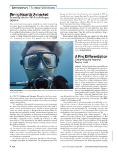 Diving Hazards Unmasked A Fine Differentiation - Environmental ...