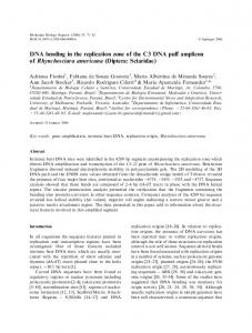 DNA bending in the replication zone of the C3 DNA ... - Springer Link