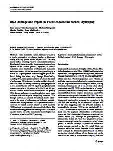 DNA damage and repair in Fuchs endothelial corneal ... - Springer Link