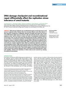 DNA damage checkpoint and recombinational repair ... - BioMedSearch