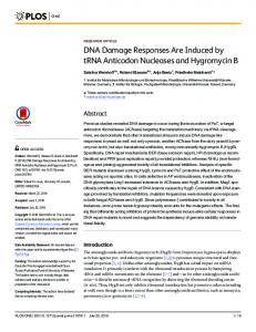 DNA Damage Responses Are Induced by tRNA ... - Semantic Scholar