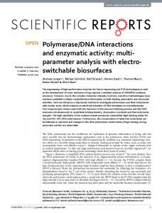 DNA interactions and enzymatic activity