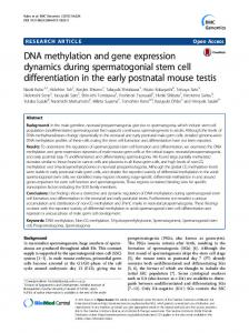 DNA methylation and gene expression dynamics during ...