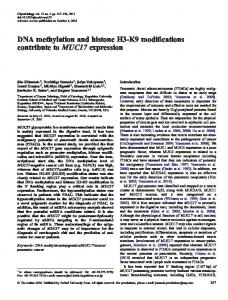 DNA methylation and histone H3-K9 modifications ... - Semantic Scholar
