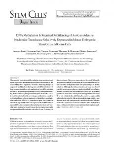 DNA Methylation Is Required for Silencing of ... - Wiley Online Library