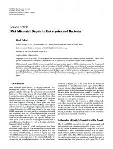 DNA Mismatch Repair in Eukaryotes and Bacteria