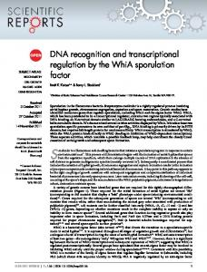 DNA recognition and transcriptional regulation by
