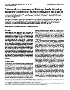 DNA repair and recovery of RNA synthesis following exposure to ...