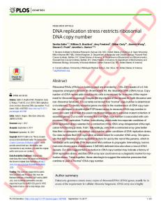 DNA replication stress restricts ribosomal DNA copy number - PLOS
