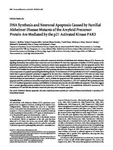 DNA Synthesis and Neuronal Apoptosis Caused ... - Semantic Scholar
