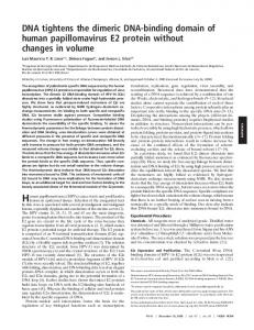 DNA tightens the dimeric DNA-binding domain of human ...