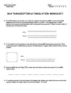 transcription translation practice worksheet mafiadoc com. Black Bedroom Furniture Sets. Home Design Ideas