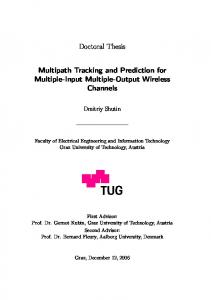 Doctoral Thesis Multipath Tracking and Prediction for Multiple-Input