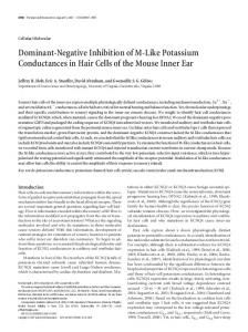 Dominant-Negative Inhibition of M-Like Potassium ... - Semantic Scholar