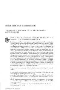 Dorsal shell wall in ammonoids - Acta Palaeontologica Polonica