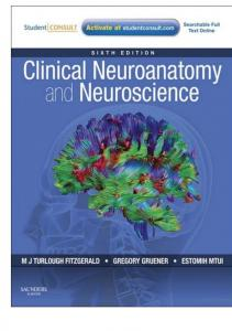 Download Clinical Neuroanatomy and Neuroscience, M. J. T. ... - Here