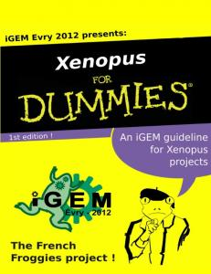 Download Xenopus For Dummies!