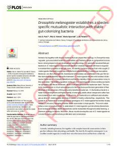 Drosophila melanogaster establishes a species