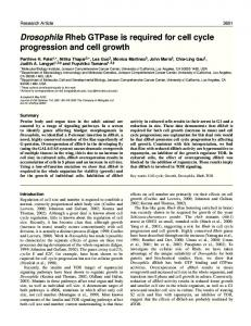 Drosophila Rheb GTPase is required for cell cycle progression and ...