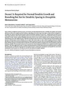 Dscam1 Is Required for Normal Dendrite Growth and Branching But ...