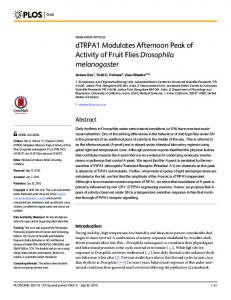 dTRPA1 Modulates Afternoon Peak of Activity of ... - Semantic Scholar
