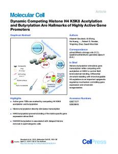 Dynamic Competing Histone H4 K5K8 Acetylation and Butyrylation ...