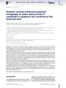 Dynamic contrast-enhanced computed tomography to ... - CiteSeerX