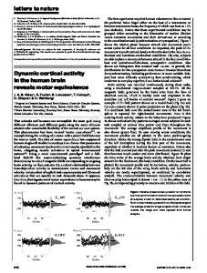 Dynamic cortical activity in the human brain ... - Semantic Scholar