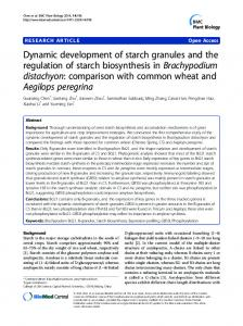 Dynamic development of starch granules and the regulation of starch ...