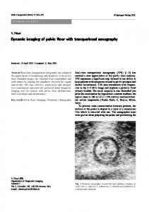 Dynamic imaging of pelvic floor with transperineal sonography