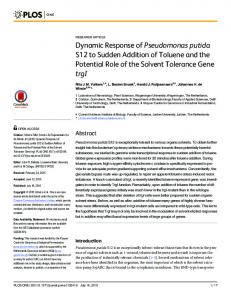 Dynamic Response of Pseudomonas putida S12 ... - Semantic Scholar