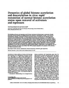 Dynamics of global histone acetylation and deacetylation in vivo: rapid ...