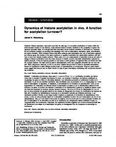 Dynamics of histone acetylation in vivo. A function for acetylation ...