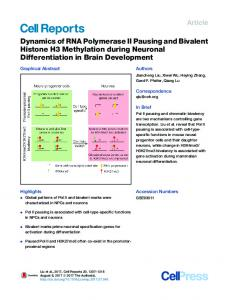 Dynamics of RNA Polymerase II Pausing and Bivalent Histone H3 ...