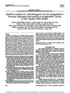 Dysferlin, Annexin A1, and Mitsugumin 53 Are Upregulated in ...