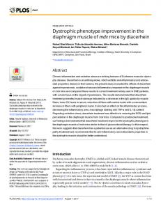 Dystrophic phenotype improvement in the diaphragm muscle of mdx ...