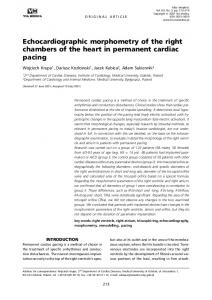 Echocardiographic morphometry of the right chambers of the heart in