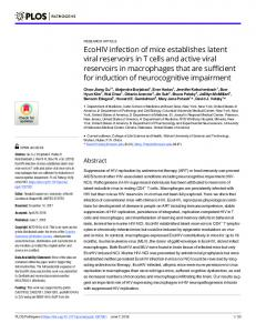 EcoHIV infection of mice establishes latent viral reservoirs in T ... - PLOS