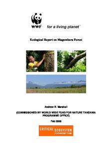 Ecological Report on Magombera Forest - Eastern Arc Mountains ...