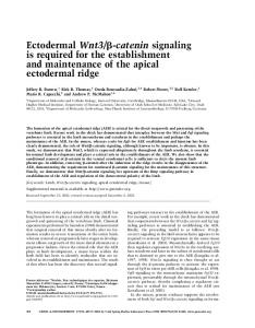 Ectodermal Wnt3/ß-catenin signaling is required for the establishment ...