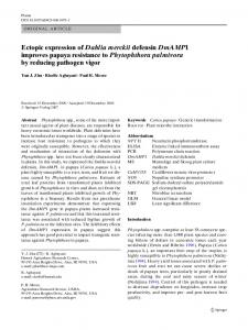 Ectopic expression of Dahlia merckii defensin ...