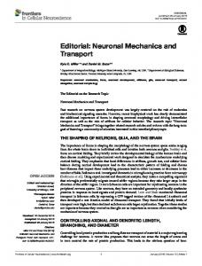 Editorial: Neuronal Mechanics and Transport - the Suter Lab! - Purdue ...