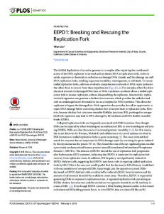 EEPD1: Breaking and Rescuing the Replication Fork - PLOS