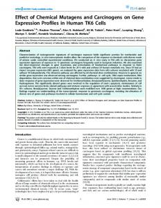 Effect of Chemical Mutagens and Carcinogens on Gene ... - CiteSeerX