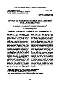 Effect of Deficit Irrigation on Raised Bed Wheat Cultivation