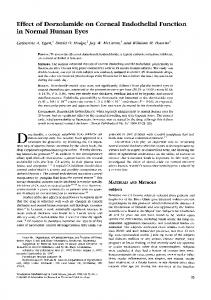 Effect of Dorzolamide on Corneal Endothelial Function in Normal