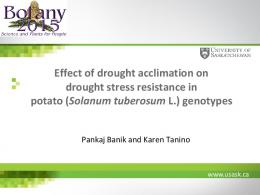 Effect of drought acclimation on drought stress ...